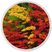 Leaves On Trees Changing Colour Round Beach Towel