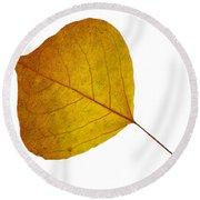 Leaves Ten  Round Beach Towel