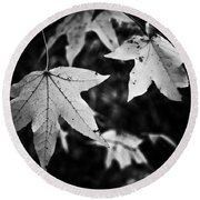 Leaves Without Color Round Beach Towel