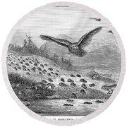 Lemming Migration Round Beach Towel