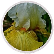 Lemon Petals Round Beach Towel