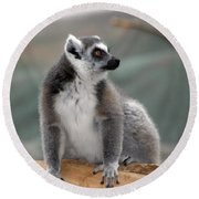 Lemur Round Beach Towel