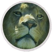 Leo,lion Round Beach Towel