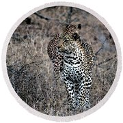 Leopard Hunt Round Beach Towel