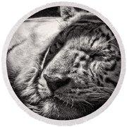 Let Sleeping Tiger Lie Round Beach Towel