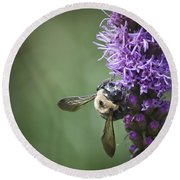 Liatris And Bee Squared 2 Round Beach Towel