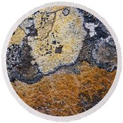 Lichen Pattern Series - 19 Round Beach Towel