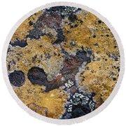 Lichen Pattern Series - 10 Round Beach Towel
