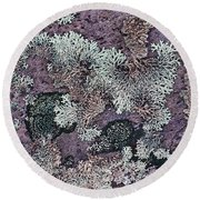 Lichen Pattern Series - 57 Round Beach Towel