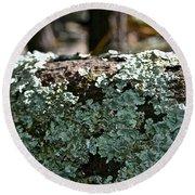 Lichens Lace Round Beach Towel