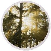 Light Beams Shining Through Trees And Fog Round Beach Towel