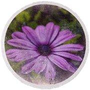Light Purple Daisy Round Beach Towel