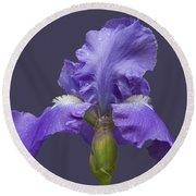 Lilac Iris Round Beach Towel