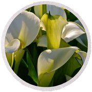 Lilies Of The Nile Round Beach Towel