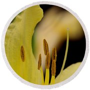 Lily - Flower - Fore And Aft Round Beach Towel