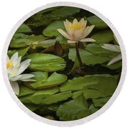 Lily Pads And Blossoms. No186 Round Beach Towel