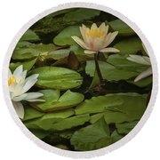 Lily Pads And Blossoms. No204 Round Beach Towel