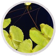 Lily Pads And Lotus Blossom Round Beach Towel