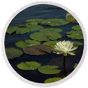 Lilypad Round Beach Towel