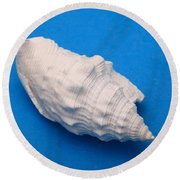 Lime Made From A Seashell Round Beach Towel by Ted Kinsman