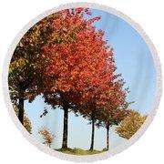 Line Of Autumn Trees Round Beach Towel