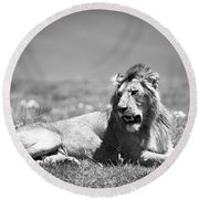 Lion King In Black And White Round Beach Towel