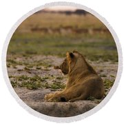 Lion Lazy Round Beach Towel