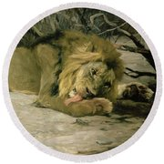 Lion Reclining In A Landscape Round Beach Towel