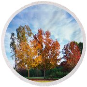 Liquid Amber Trees Round Beach Towel