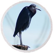 Little Blue Heron I Round Beach Towel