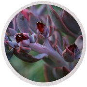 Little Red Blossoms Round Beach Towel