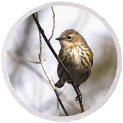 Little Speckled Bird Round Beach Towel