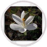 Little White Flower Round Beach Towel