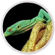 Lizard Round Beach Towel