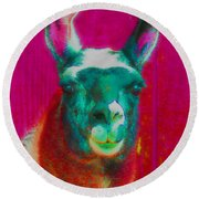 Llama Of A Different Color Round Beach Towel