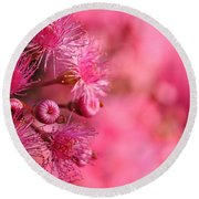 Lollypop Gum Tree Blossoms Round Beach Towel