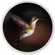 Lone Hummingbird Round Beach Towel