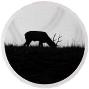 Lone Male Grazing On Top Of Hill. Round Beach Towel