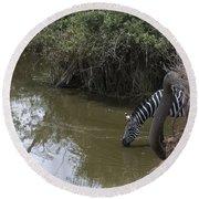 Lone Zebra At The Drinking Hole Round Beach Towel
