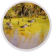 Long Billed Dowitchers Migrating Round Beach Towel