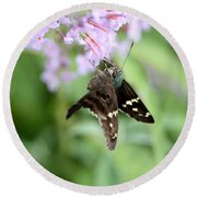 Long Tailed Skipper - Urbanus Proteus Round Beach Towel