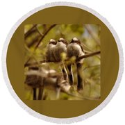 Longtailed Tit Fledglings Round Beach Towel