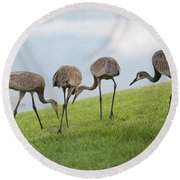 Look What I Found Round Beach Towel by Carol Groenen