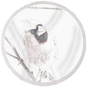 Looking In The Windwo At Me II Round Beach Towel
