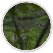 Looking Through The Trees Round Beach Towel