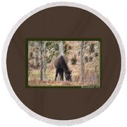 Lost In The Woods Round Beach Towel