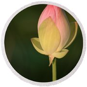 Lotus Bud Round Beach Towel