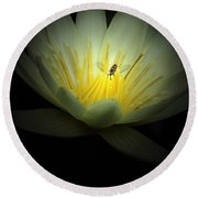 Lotus Blossom And Bee Round Beach Towel