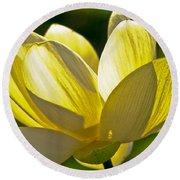Lotus Flower Round Beach Towel