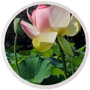 Lotus Lily Standing Tall Round Beach Towel